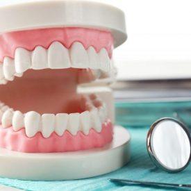 Grinding teeth demonstration
