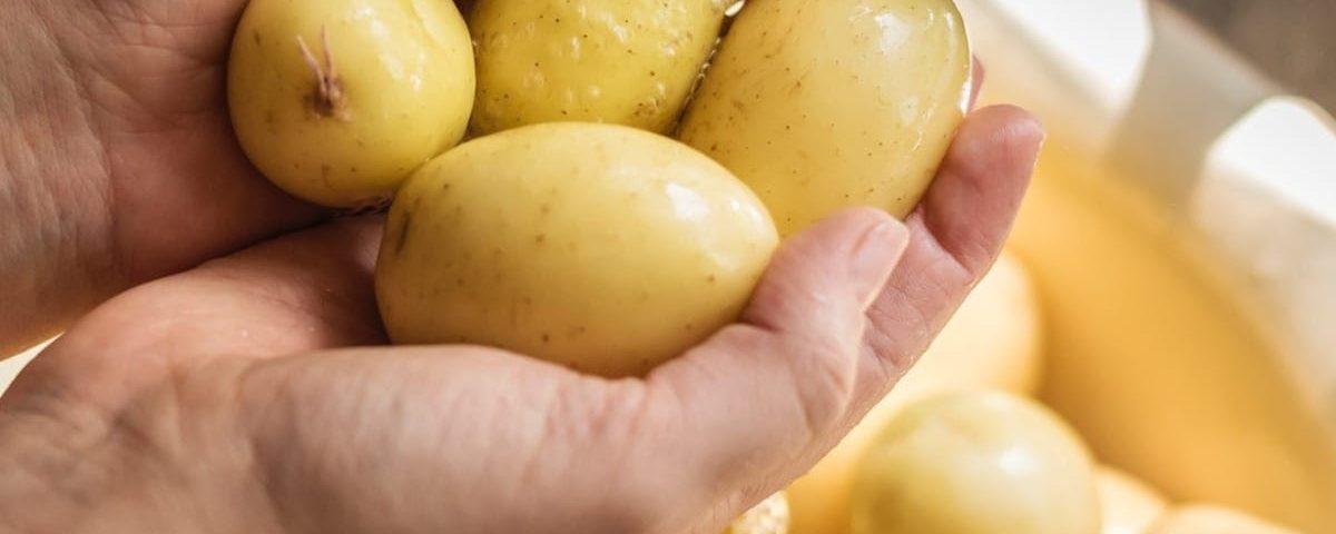 washing potatoes to eat as oral surgery recovery food